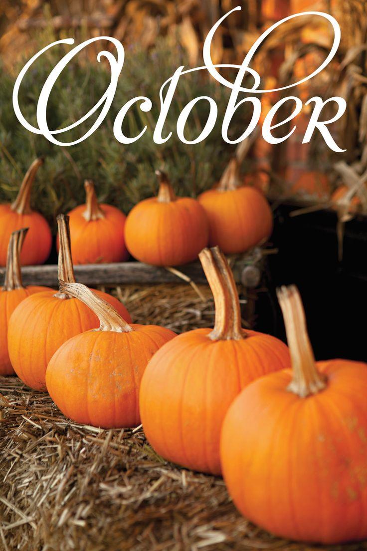 Happy October! #fall #bestmonthever #fastfixin