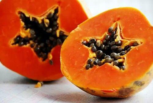 Pasti sudah banyak yang mengetahui khasiat kesehatan dari buah pepaya matang, namun tak hanya buah pepaya yang sudah matang dan berwarna orange yang memiliki khasiat kesehatan. Buah pepaya muda atau yang masih belum matang pun ternyata memiliki aneka khasiat baik untuk kesehatan tubuh.  Pepaya muda atau pepaya yang belum benar-benar matang biasanya berwarna hijau dan belum memiliki biji dengan bagian dalam buah biasanya berwarna lebih putih. Pepaya muda memang tak sepopuler pepaya yang sudah…