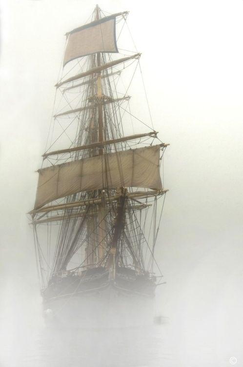 Tall ship in the fog.