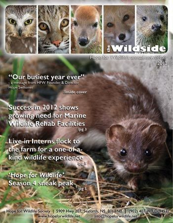 Hope for Wildlife Society... awesome!