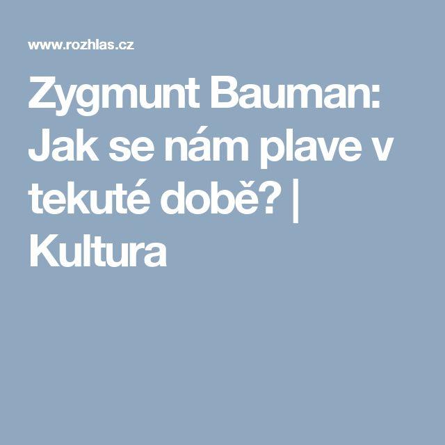 Zygmunt Bauman: Jak se nám plave v tekuté době? | Kultura