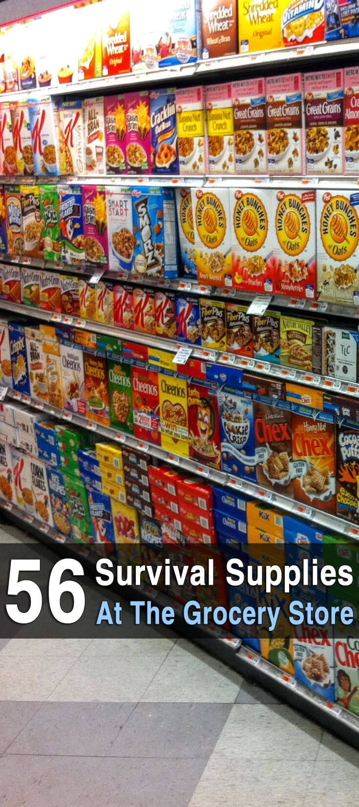Survival food isn't just MRE's, canned bacon, space ice cream and the like. It\'s any type of food that lasts a long time without refrigeration.