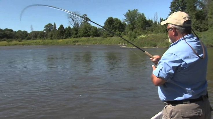78 images about bill dance on pinterest happy day tv for Bill dance fishing