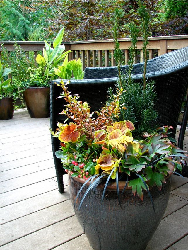 1924 best CONTAINER GARDEN INSPIRATION images on Pinterest Pots