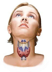 Cáncer de tiroides,.Síntomas de cáncer de tiroides Primeros signos típicos de carcinoma tiroideo, información sobre las señales iniciales que tiene el tumor de tiroide.     Los síntomas del cáncer de tiroides pueden incluir: un bulto en la base del cuello, voz ronca que dura más de un par de semanas, dolor de garganta o dificultad para tragar (odinofagia) que no mejora.