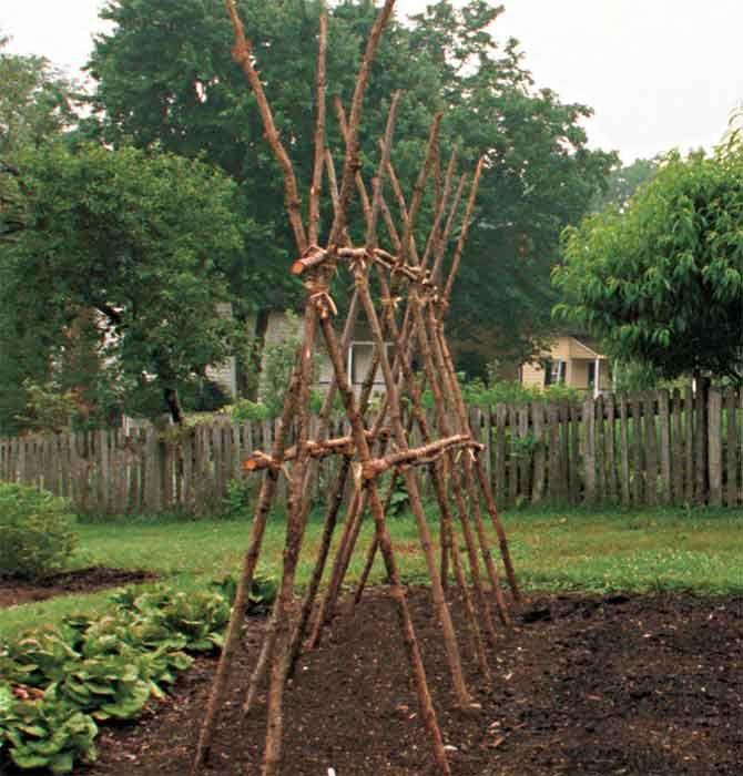 Опора для вьющихся растений – наклонные решетки.