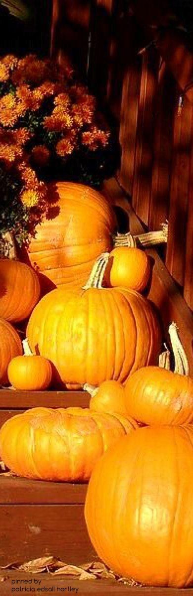 Autumn Equinox: At the Autumn #Equinox.
