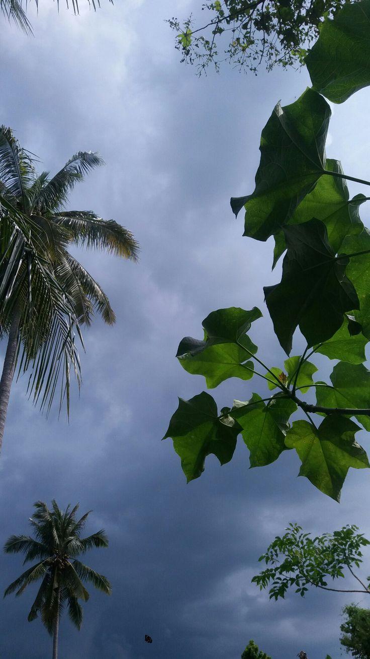 mendung bukan berarti hujan Fotografi alam, Pemandangan