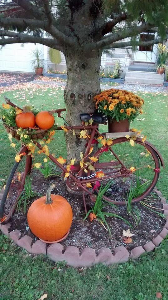 Pronto per un giro in bicicletta Idee per fioriere da giardino per biciclette per cortili | FarmFoodFam …