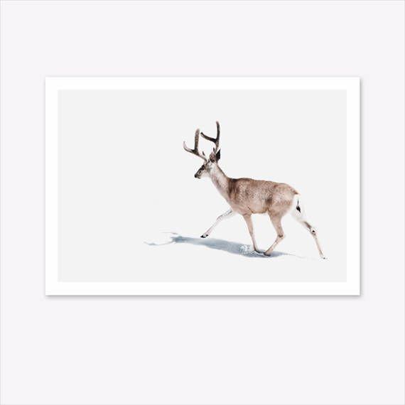 Deer Print, Nature Prints, Scandinavian Print, Woodland Animals, Nature Photography, Landscape Print, Scandi Home Decor, Nordic Poster #homedecorideas #homedecoronabudget #homedecordiy #homedecorideasmodern #homeoffice #homedecor #homeideas #wallart #walldecor #wallartdiy #art #print #digital #deerprint #stagprint #stagpicture #scandinavianprint #scandinavianmodern #natureprints