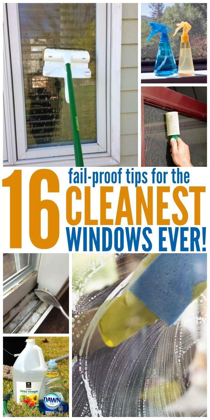 With these window cleaning tips, you can get absolutely spotless windows (no, really!) with less effort than you'd think.