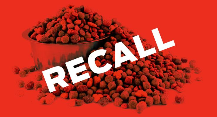 Dog food recalls 20192020 is your brand on this list
