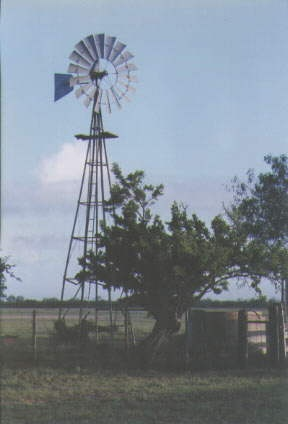 Windmill in Deep South Texas
