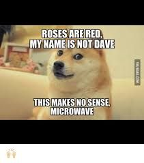 Image result for Roses are red My name is not dave This makes no sense Microwave