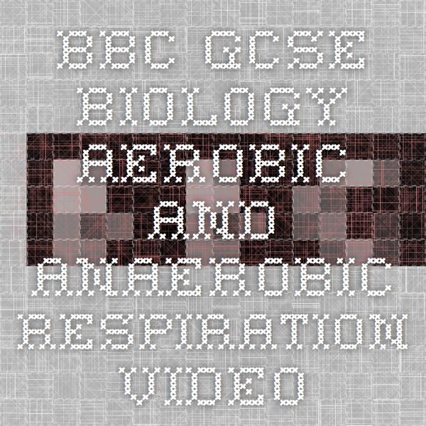 BBC - GCSE Biology - Aerobic and anaerobic respiration - Video