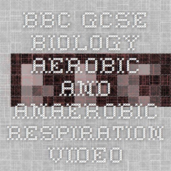 BBC - GCSE Biology - Aerobic and anaerobic respiration - Video