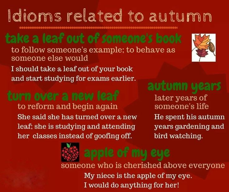 Do you know any expressions associated with this new season? Learn these very popular autumnal idiom...