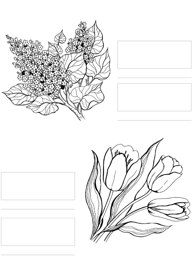 httpcoloringtoolkitcom copic coloring flowers