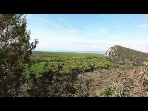 PARCO della MAREMMA sentiero Le Torri ** toscana italy ** - YouTube