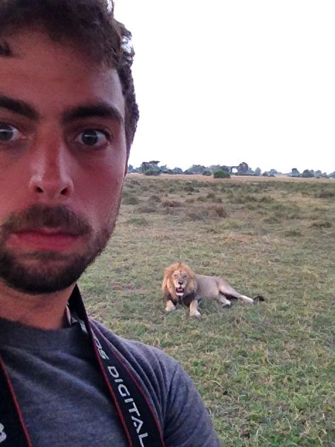 As you can see, the lion tried to run away from us. | Why Killing A Lion Is The Most Cowardly Thing You Can Do
