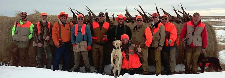 Get the best South Dakota Pheasant Hunting experience with expert hunters and trained dogs through Ringnecks Hunting Lodge. Call us 605-7667837 or Visit at http://www.ringneckshuntinglodge.com