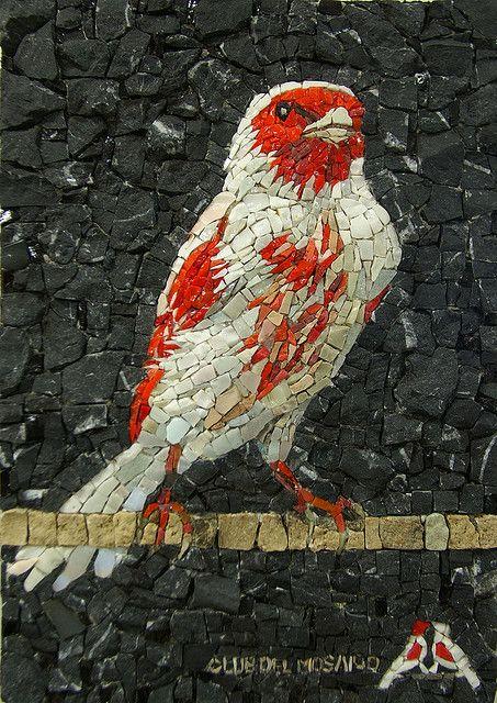 """Canarino Nero.  Ogni anno realizziamo i premi per associazioni ornitologiche.  questo è il premio per il miglior """"canarino mosaico"""" concorso internazionale."""