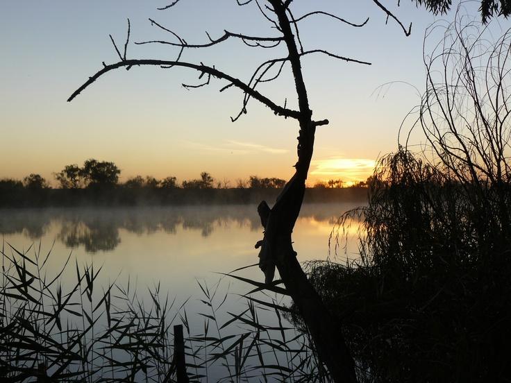 #MurrayRiver #SouthAustralia