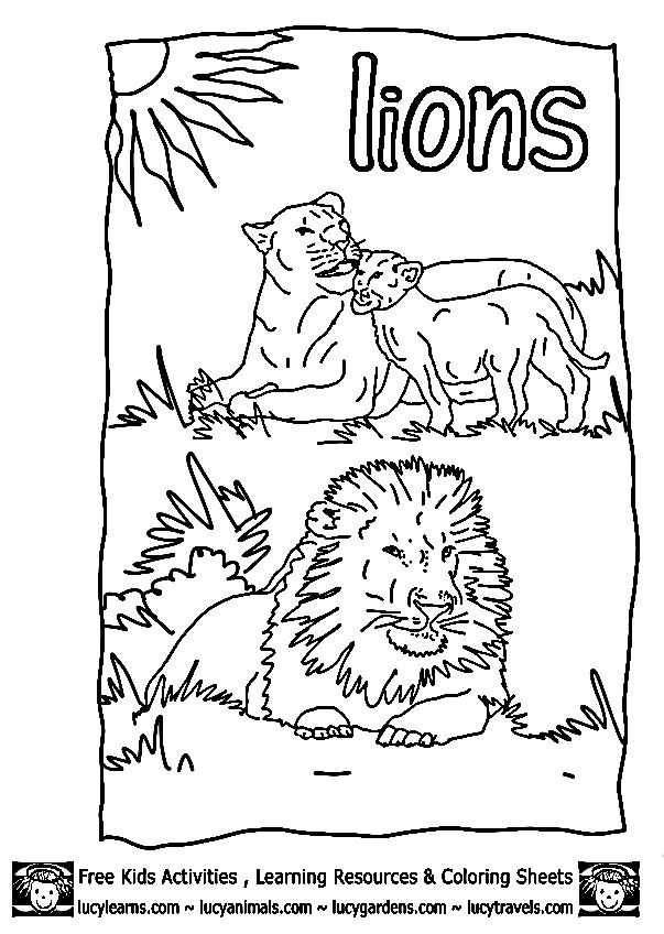 SheetsLucy Lion Coloring Pages Kids Zoo Animal
