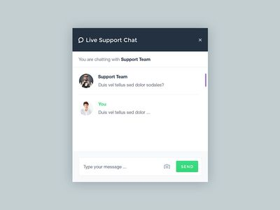 Support Chat