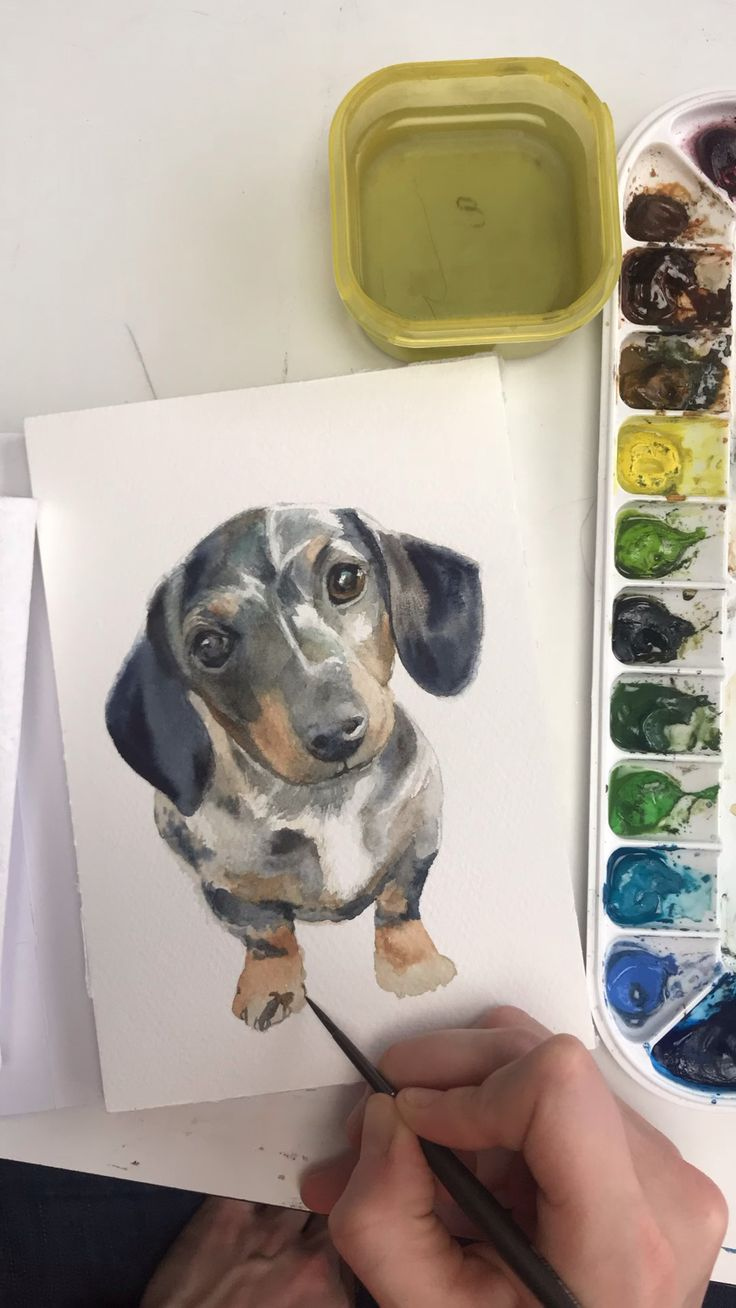 Dachshund puppy watercolor time lapse