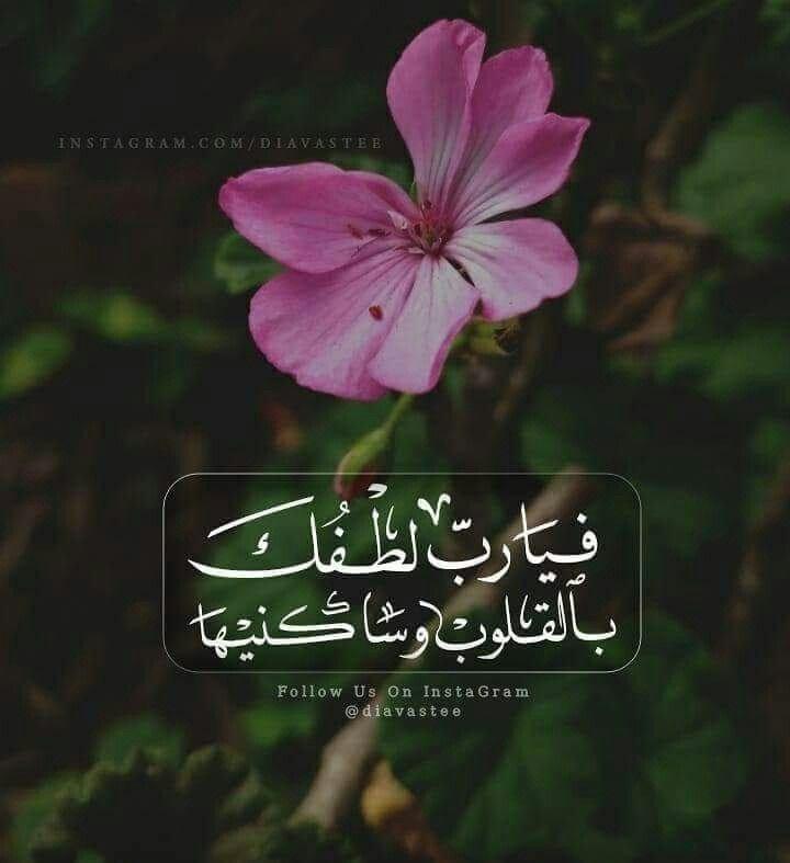 فيا رب لطفك بالقلوب وساكنيها Instagram Plants Islam