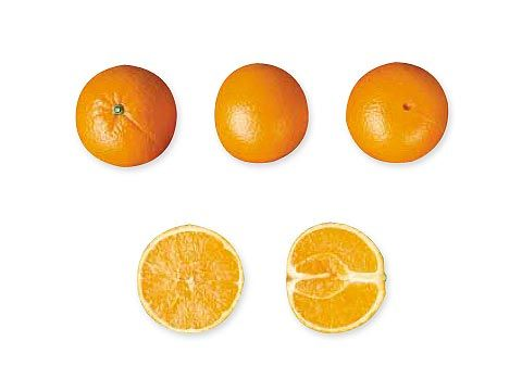 Naranjas Navel Lanne-Late. Disponible en Cajas de 5, 10 y 15 Kg