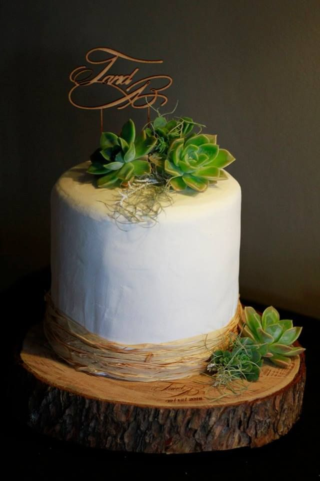 My first wedding cake ~ Rustic succulents