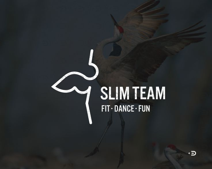 Logo, mark for SlimTeam by ©Edoudesign.  SlimTeam. Fit Dance Fun - dance weight loss program  #slim #team #dance #fit #fun #weight #crane  #edoudesign #logomaker #symbol #mark #logo #logotype #typetopia #typetopialogolove #calligritype #goodtype #designspiration #logoplace #logoinspirations #typografi #typematters #thedesigntip #thedailytype #typography #handmadefont #logodesigners #lettering #typeverything