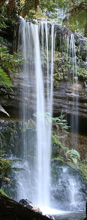 The spectacular Russell Falls in Mt Field National Park. #waterfall #mtfield #tasmania #discovertasmania Image Credit: Carl Koenig
