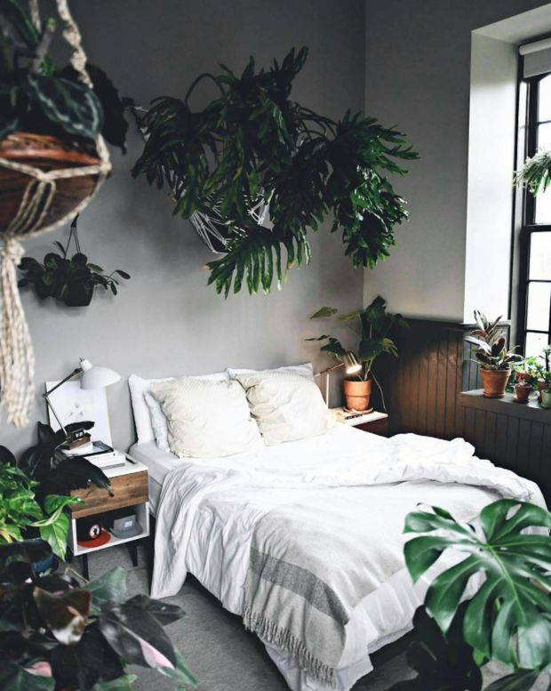 plant-filled bedroom