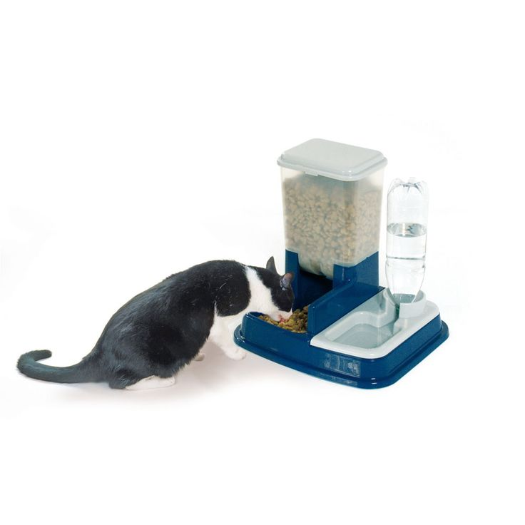 Distributore automatico di acqua e cibo per gatti e cani - Vendita Online - Dmail - Ciotole, Distributori