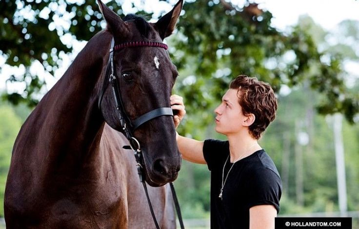 i want to ride that.... but the horse is cute too.