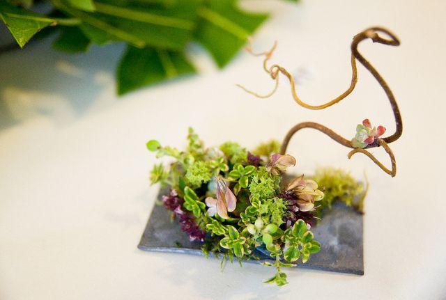 Miniature Flower Arrangement by Beckie Trivett, via Flickr