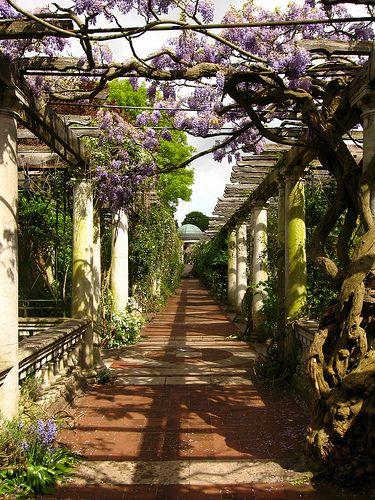 Hampstead Heath, London. Lovely garden.