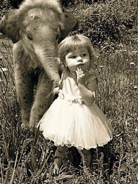 Elephant elefante little girl sepia