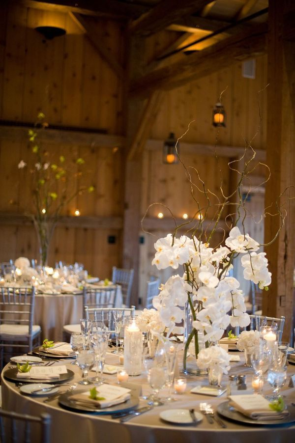 Orchid and stick Centerpieces.  Beautiful for a winter wedding!