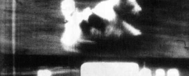 Little dog for Roger (1967) Reino Unido. Dir.: Malcolm Le Grice. Documental. Curtametraxes – DVD CINE 1826