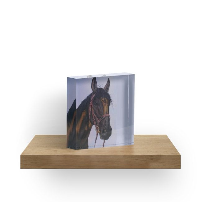 Gifts for horse lovers, acrylic block
