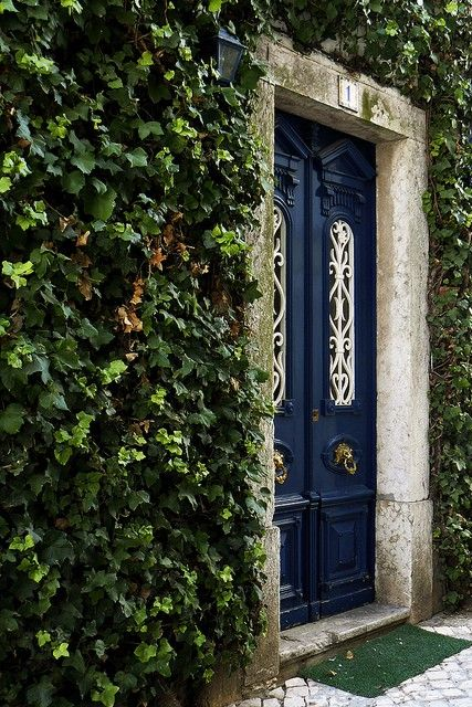 blue door and ivy covered walls