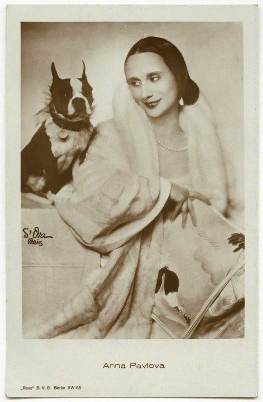 Portrait of Anna Pavlova with her Boston Terrier Poupee by Madame d'Ora, 1920s.