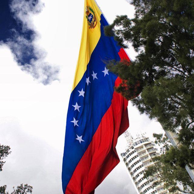 venezuelian flag
