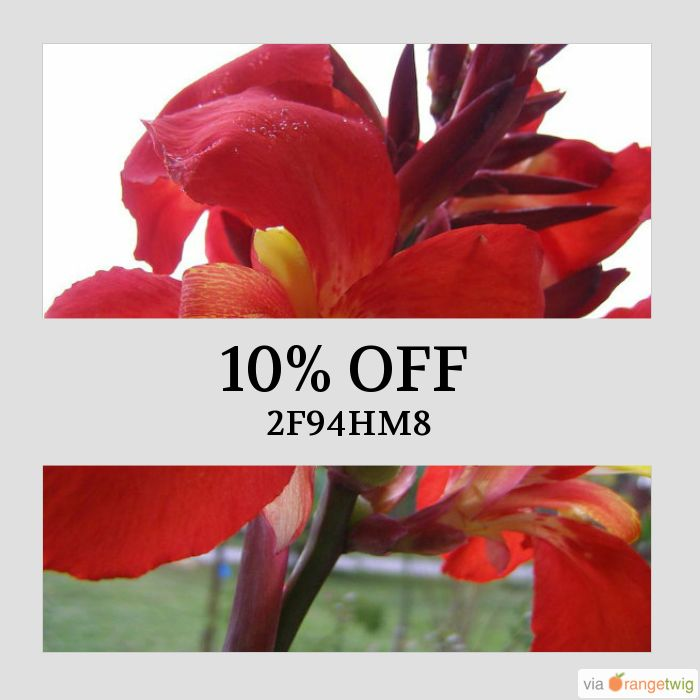 We are happy to announce 10% OFF on our Entire Store. Coupon Code: 2F94HM8.  Min Purchase: N/A.  Expiry: 1-Nov-2017.  Click here to avail coupon: https://small.bz/AAme0bi #etsy #etsyseller #etsyshop #etsylove #etsyfinds #etsygifts #musthave #loveit #instacool #shop #shopping #onlineshopping #instashop #instagood #instafollow #photooftheday #picoftheday #love #OTsto..