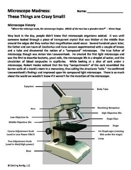 Cells Lab: Exploration into Microscope Use | How do you view specimens under a microscope? This lesson will tell you! During this lesson students will learn: * The parts of a compound light microscope * How to use the different objective lenses * What not to do with a microscope.