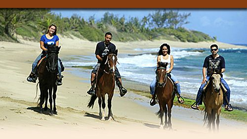 The best horseback rides in Puerto Rico/ Thru Beaches, Sunsets and secluded trails  #SanJuanMarriott #MyWay to SanJuan